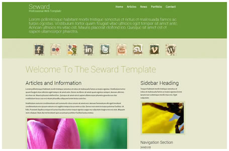 Professional Dreamweaver Web Templates